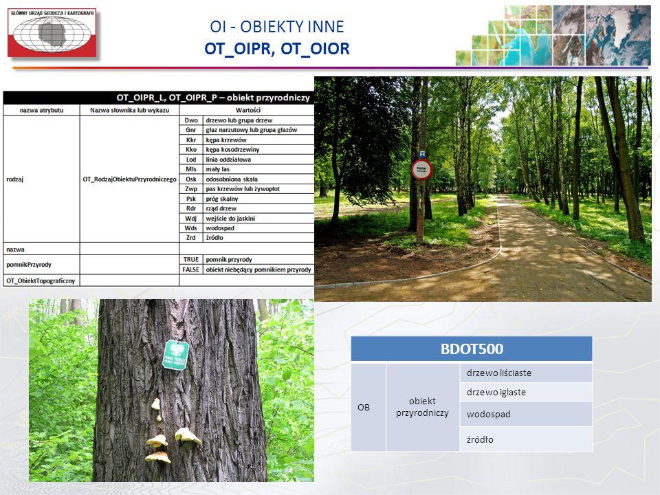 OI - OBIEKTY INNE OT_OIPR, OT_OIOR BDOT500 OB obiekt przyrodniczy drzewo liściaste drzewo iglaste wodospad źródło