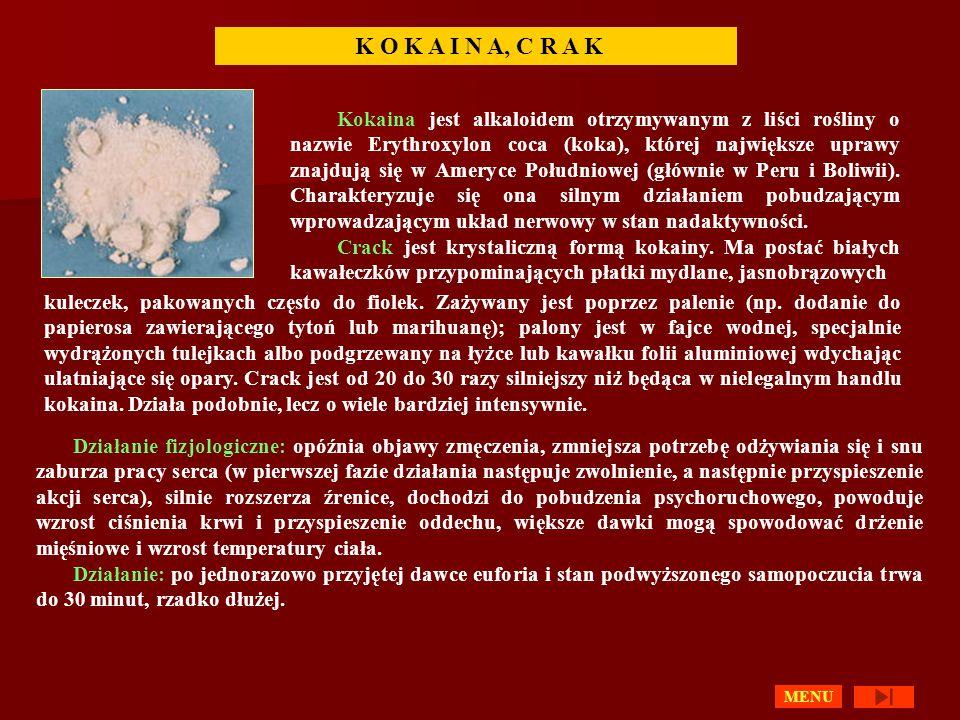 K O K A I N A, C R A K Kokaina jest alkaloidem otrzymywanym z liści rośliny o nazwie Erythroxylon coca (koka), której największe uprawy znajdują się w Ameryce Południowej (głównie w Peru i Boliwii).