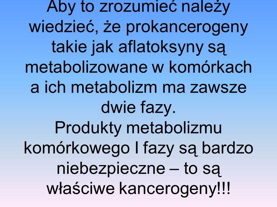 Aby to zrozumieć należy wiedzieć, że prokancerogeny takie jak aflatoksyny są metabolizowane w komórkach a ich metabolizm ma zawsze dwie fazy. Produkty