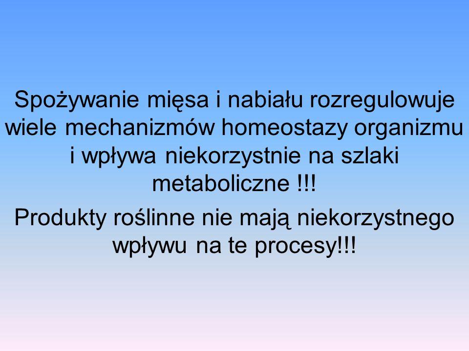 Spożywanie mięsa i nabiału rozregulowuje wiele mechanizmów homeostazy organizmu i wpływa niekorzystnie na szlaki metaboliczne !!! Produkty roślinne ni
