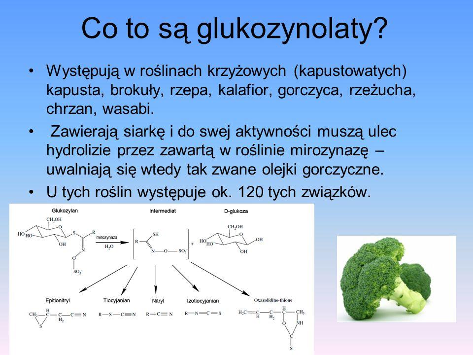 Co to są glukozynolaty? Występują w roślinach krzyżowych (kapustowatych) kapusta, brokuły, rzepa, kalafior, gorczyca, rzeżucha, chrzan, wasabi. Zawier