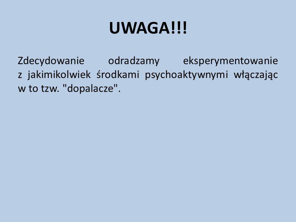 UWAGA!!! Zdecydowanie odradzamy eksperymentowanie z jakimikolwiek środkami psychoaktywnymi włączając w to tzw.
