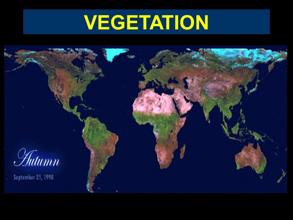 Landsat 4 1987 r. Landsat 7 2002 r. Landsat 1 1972 r. AFRYKA Jez. Czad zarejestrowana dynamika zmniejszenia wielkości jeziora (barwa czerwona to w rze