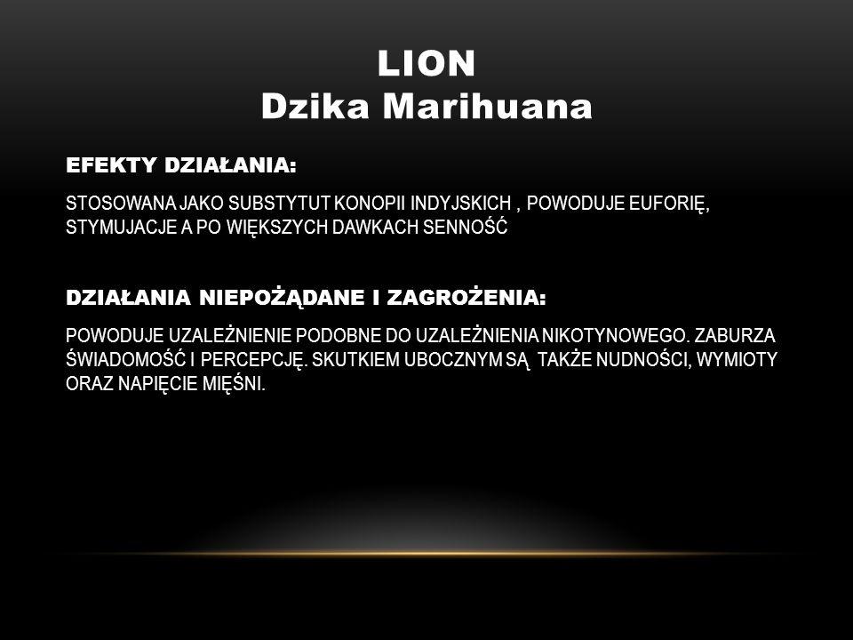LION Dzika Marihuana EFEKTY DZIAŁANIA: STOSOWANA JAKO SUBSTYTUT KONOPII INDYJSKICH, POWODUJE EUFORIĘ, STYMUJACJE A PO WIĘKSZYCH DAWKACH SENNOŚĆ DZIAŁA