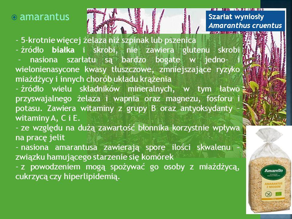  amarantus - 5-krotnie więcej żelaza niż szpinak lub pszenica - źródło białka i skrobi, nie zawiera glutenu skrobi - nasiona szarłatu są bardzo bogat