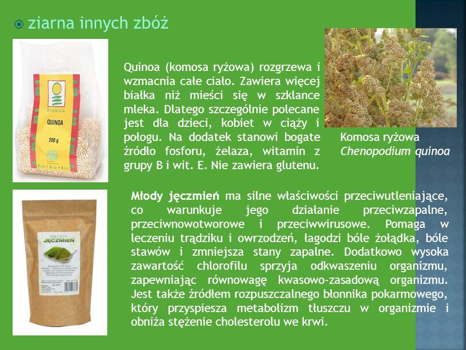  ziarna innych zbóż Quinoa (komosa ryżowa) rozgrzewa i wzmacnia całe ciało. Zawiera więcej białka niż mieści się w szklance mleka. Dlatego szczególni