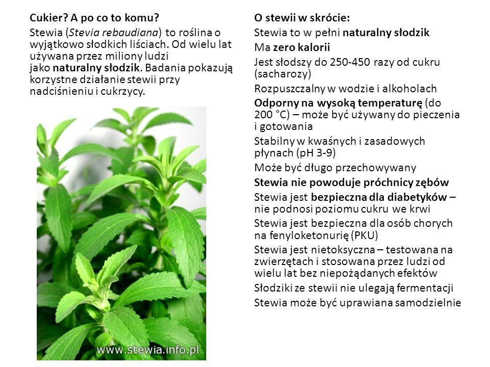 Cukier? A po co to komu? Stewia (Stevia rebaudiana) to roślina o wyjątkowo słodkich liściach. Od wielu lat używana przez miliony ludzi jako naturalny