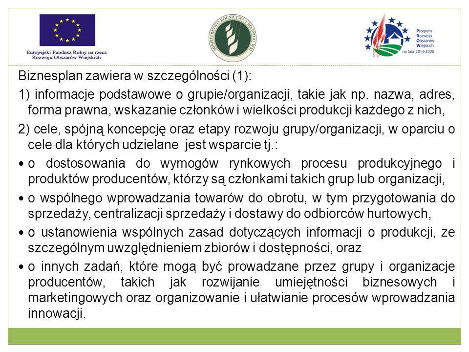 Biznesplan zawiera w szczególności (1): 1) informacje podstawowe o grupie/organizacji, takie jak np.