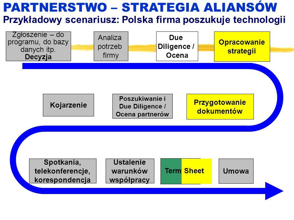 Zgłoszenie – do programu, do bazy danych itp. Decyzja Analiza potrzeb firmy Umowa PARTNERSTWO – STRATEGIA ALIANSÓW Przykładowy scenariusz: Polska firm