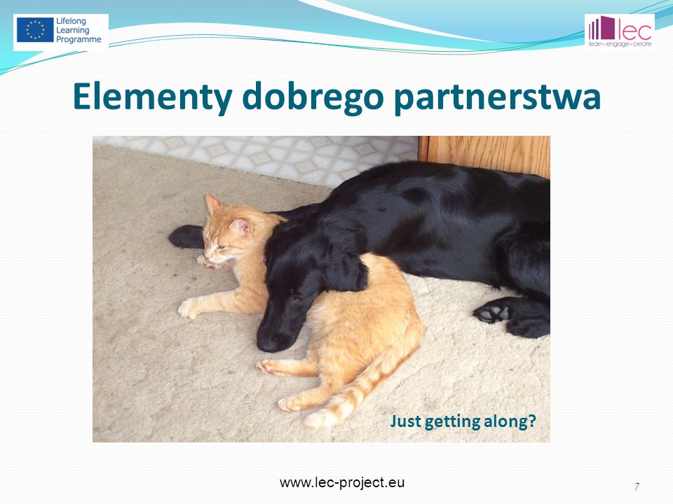 www.lec-project.eu Elementy dobrego partnerstwa 7 Just getting along?