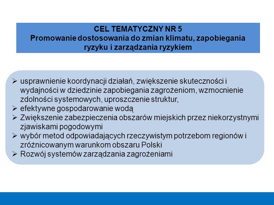  usprawnienie koordynacji działań, zwiększenie skuteczności i wydajności w dziedzinie zapobiegania zagrożeniom, wzmocnienie zdolności systemowych, up