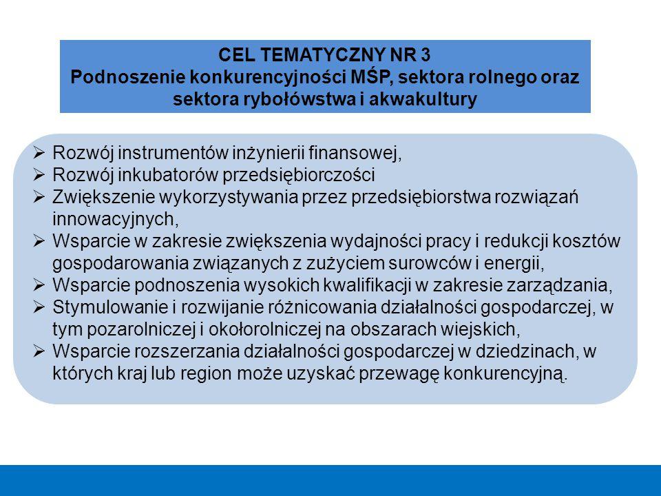Cel główny RPO WM będzie realizowany poprzez 3 cele szczegółowe: Rozwój konkurencyjnej gospodarki regionu opartej na innowacyjności, przedsiębiorczości, chłonnym rynku pracy i zrównoważonych zasobach.