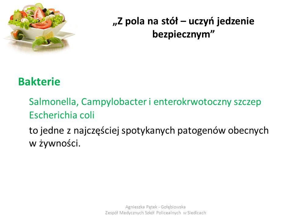 """""""Z pola na stół – uczyń jedzenie bezpiecznym"""" Bakterie Salmonella, Campylobacter i enterokrwotoczny szczep Escherichia coli to jedne z najczęściej spo"""