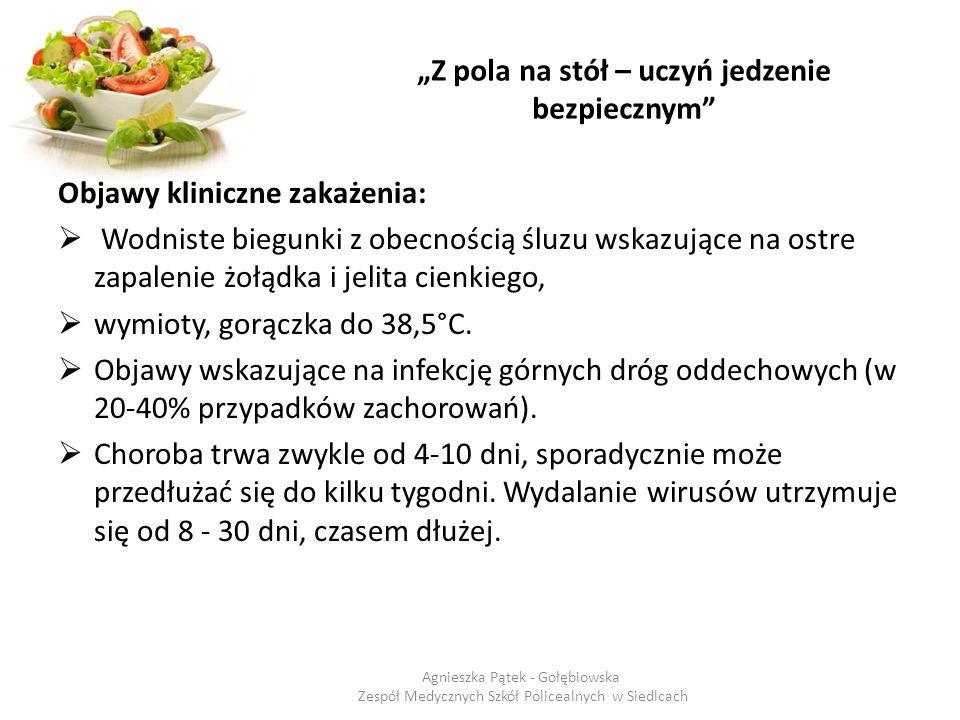 """""""Z pola na stół – uczyń jedzenie bezpiecznym"""" Objawy kliniczne zakażenia:  Wodniste biegunki z obecnością śluzu wskazujące na ostre zapalenie żołądka"""