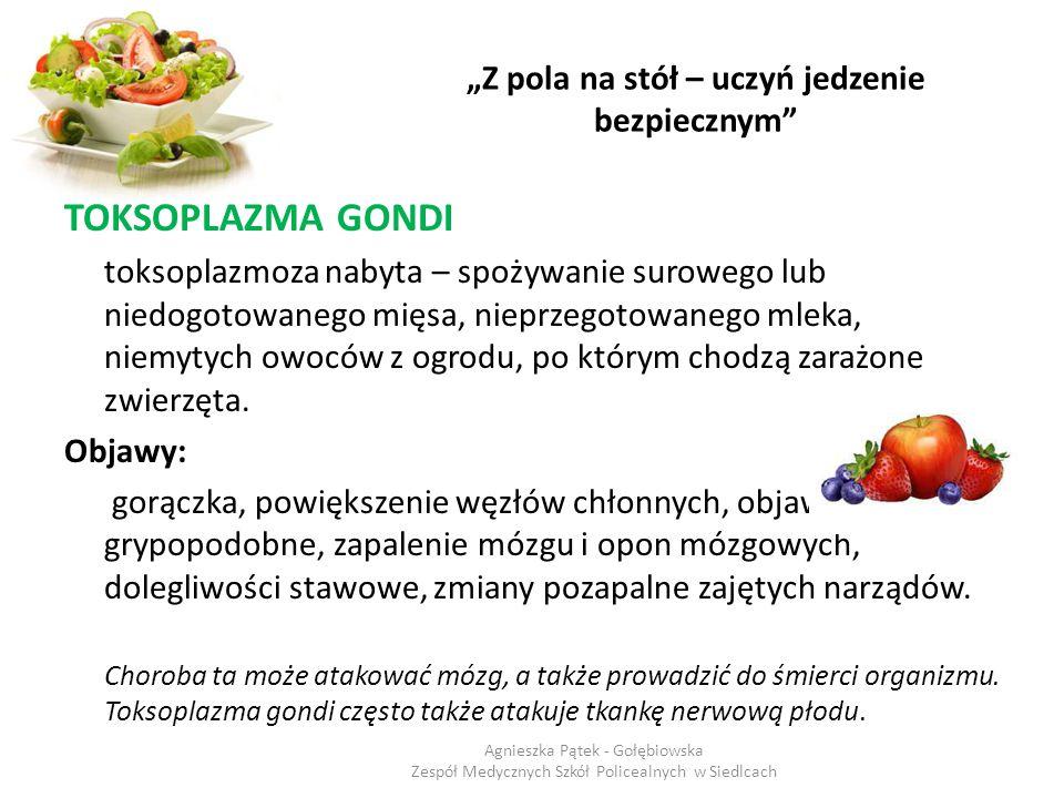 """""""Z pola na stół – uczyń jedzenie bezpiecznym"""" TOKSOPLAZMA GONDI toksoplazmoza nabyta – spożywanie surowego lub niedogotowanego mięsa, nieprzegotowaneg"""