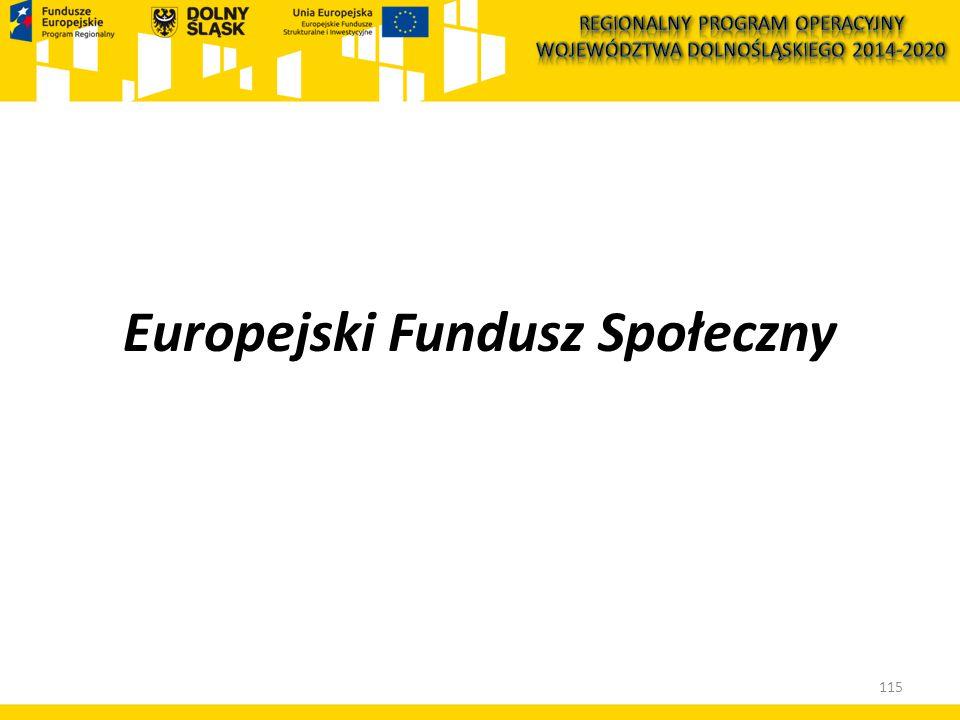 Europejski Fundusz Społeczny 115