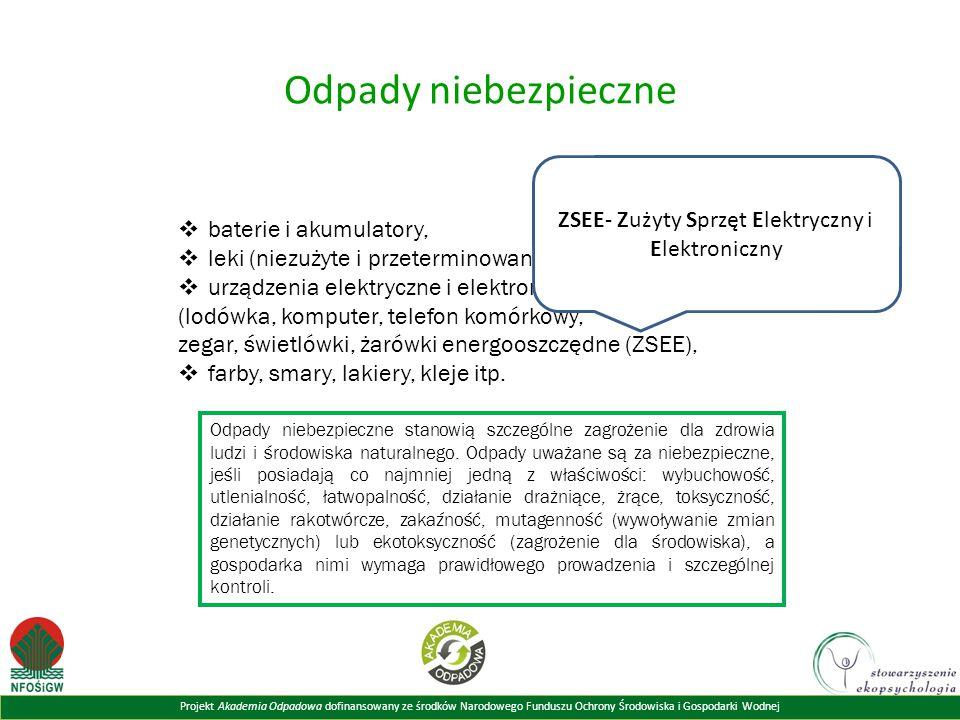 Projekt Akademia Odpadowa dofinansowany ze środków Narodowego Funduszu Ochrony Środowiska i Gospodarki Wodnej Odpady niebezpieczne  baterie i akumula
