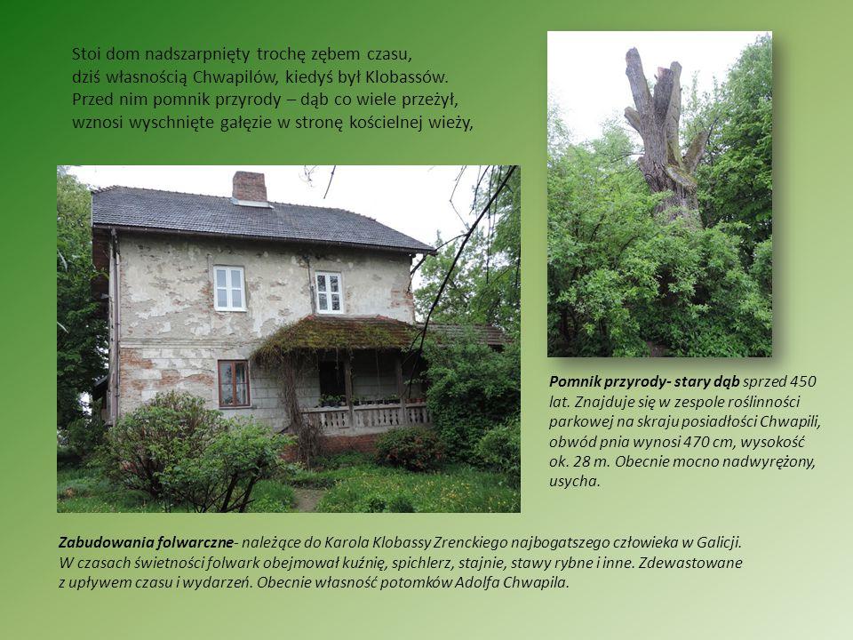 Stoi dom nadszarpnięty trochę zębem czasu, dziś własnością Chwapilów, kiedyś był Klobassów. Przed nim pomnik przyrody – dąb co wiele przeżył, wznosi w