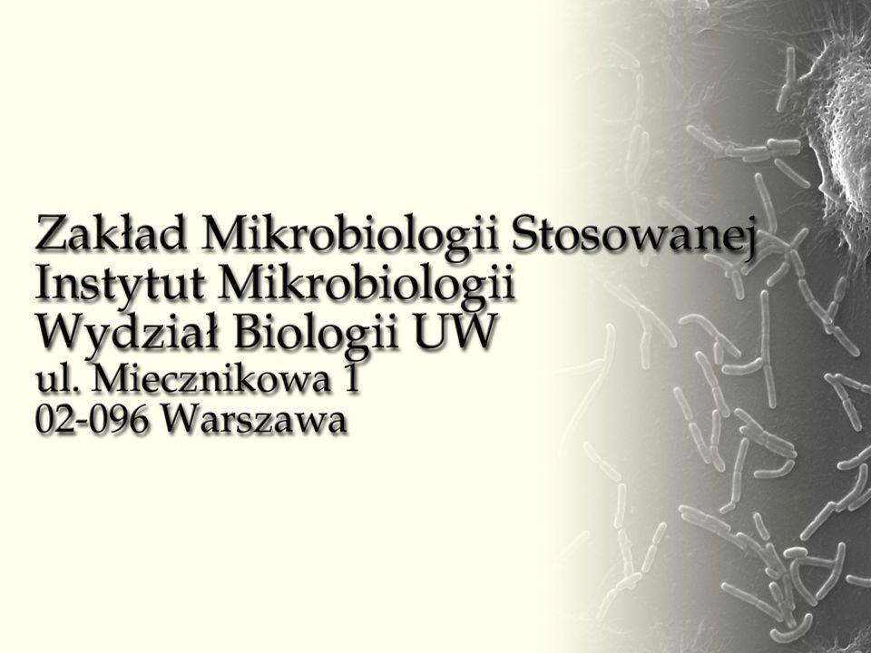 Prof.dr hab. Jacek Bielecki – kierownik (22) 554 13 04 e-mail: jbielecki@biol.uw.edu.pl Dr hab.