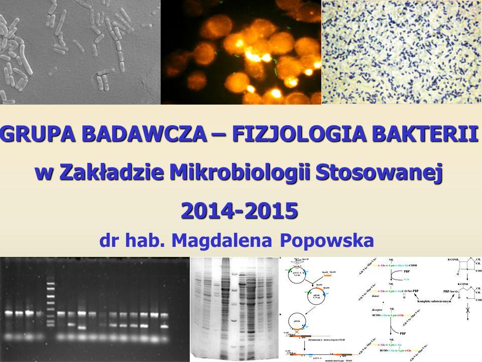 GRUPA BADAWCZA – FIZJOLOGIA BAKTERII w Zakładzie Mikrobiologii Stosowanej 2014-2015 dr hab. Magdalena Popowska