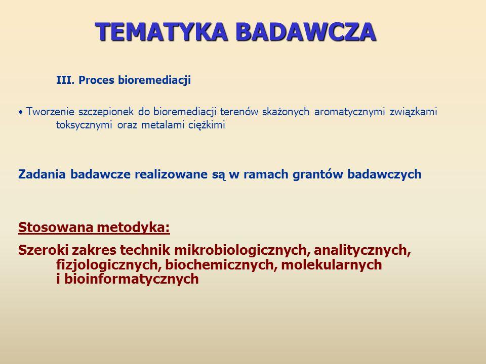 TEMATYKA BADAWCZA III. Proces bioremediacji Tworzenie szczepionek do bioremediacji terenów skażonych aromatycznymi związkami toksycznymi oraz metalami