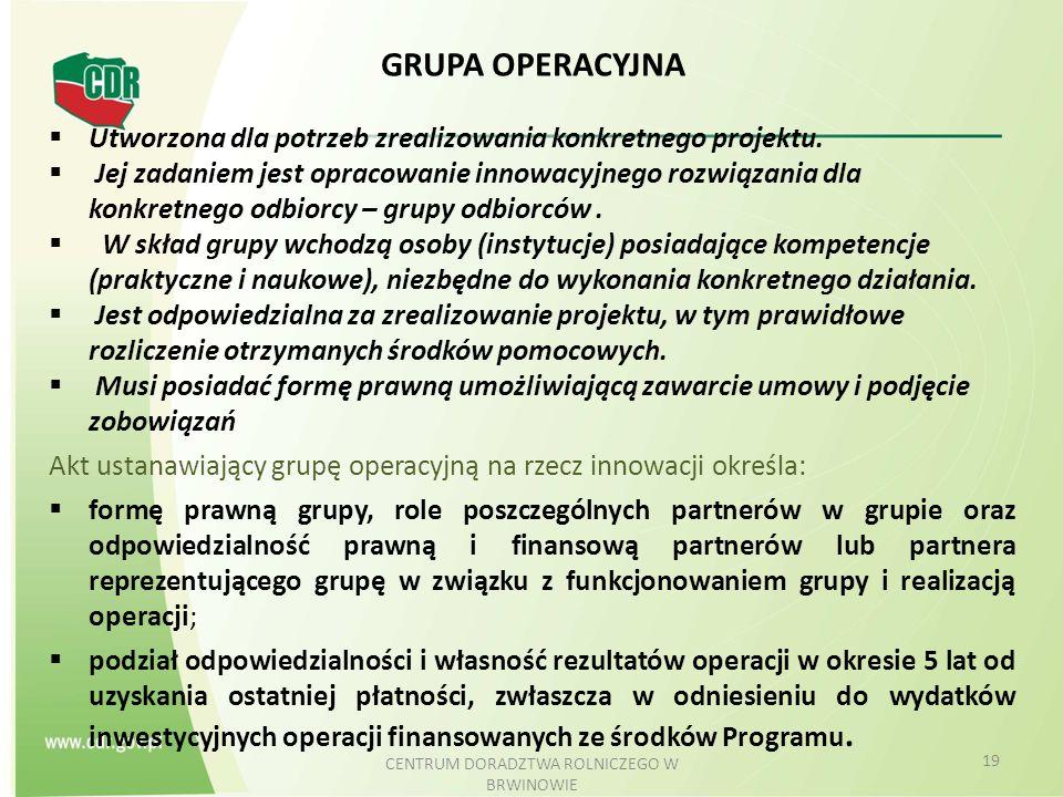 GRUPA OPERACYJNA  Utworzona dla potrzeb zrealizowania konkretnego projektu.