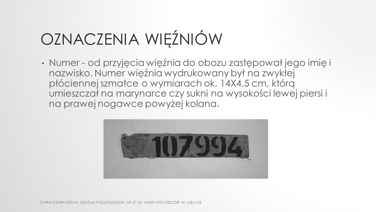 ŁÓŻKA OBOZOWE DARIA CZARNOCKA, SZKOŁA PODSTAWOWA NR 27 IM. MARII MONTESSORI W LUBLINIE
