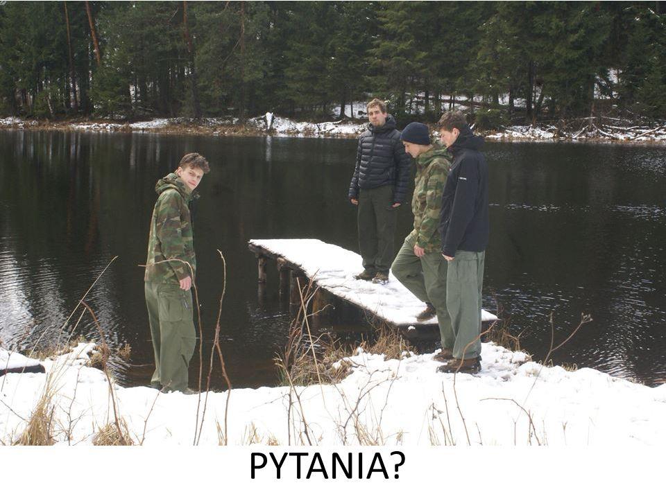 Pytania? PYTANIA?