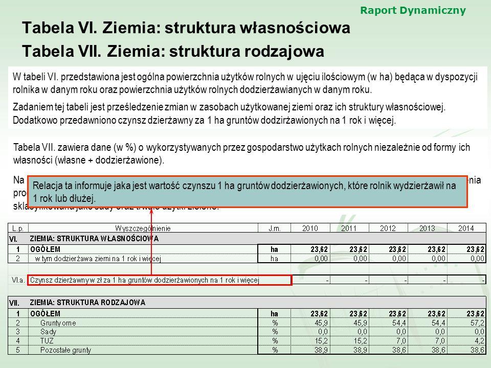 Raport Dynamiczny Tabela VI. Ziemia: struktura własnościowa Tabela VII. Ziemia: struktura rodzajowa W tabeli VI. przedstawiona jest ogólna powierzchni