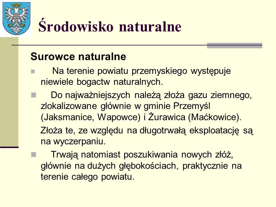 Środowisko naturalne Surowce naturalne Na terenie powiatu przemyskiego występuje niewiele bogactw naturalnych. Do najważniejszych należą złoża gazu zi