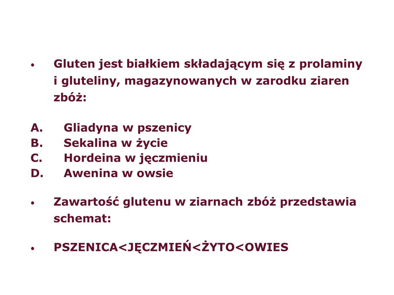 Gluten jest białkiem składającym się z prolaminy i gluteliny, magazynowanych w zarodku ziaren zbóż: A.Gliadyna w pszenicy B.Sekalina w życie C.Hordein