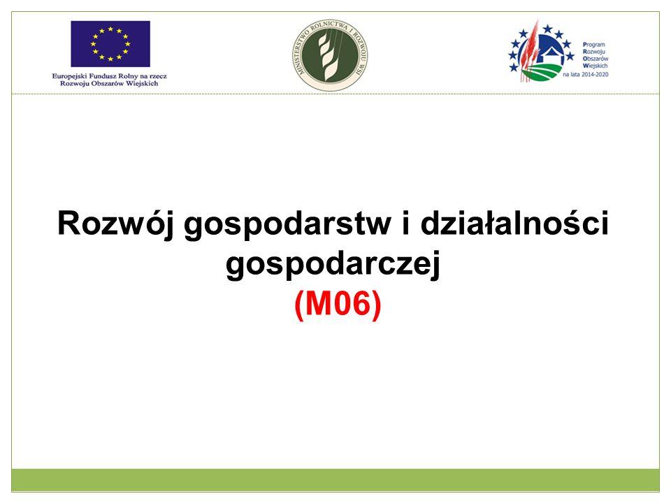 Rozwój gospodarstw i działalności gospodarczej (M06)