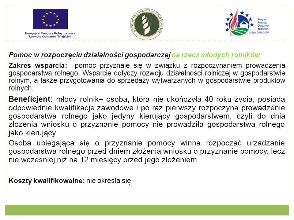 Pomoc w rozpoczęciu działalności gospodarczej na rzecz młodych rolników Rodzaje wsparcia: Pomoc ma formę premii.