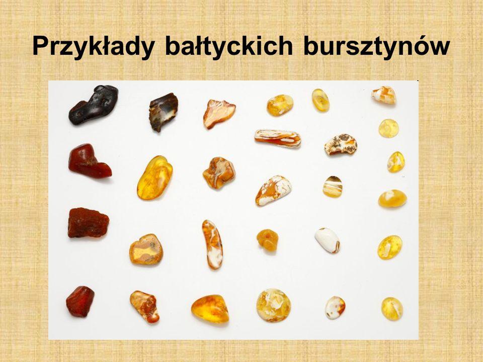 Przykłady bałtyckich bursztynów