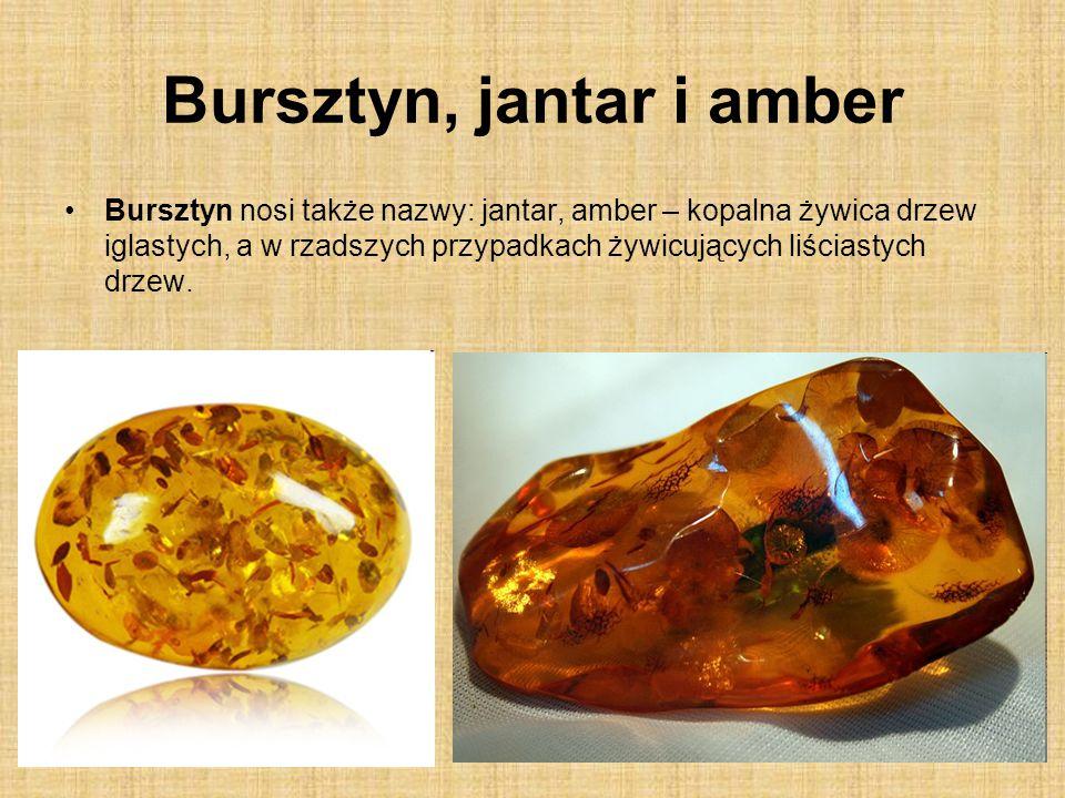 Bursztyn, jantar i amber Bursztyn nosi także nazwy: jantar, amber – kopalna żywica drzew iglastych, a w rzadszych przypadkach żywicujących liściastych drzew.