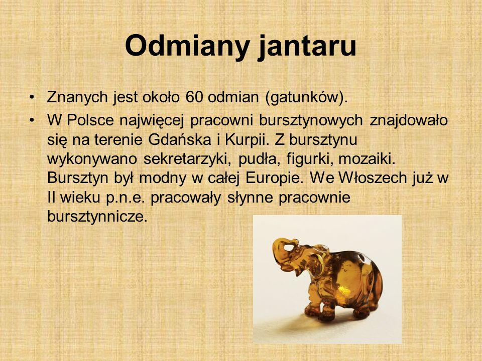 Odmiany jantaru Znanych jest około 60 odmian (gatunków). W Polsce najwięcej pracowni bursztynowych znajdowało się na terenie Gdańska i Kurpii. Z bursz