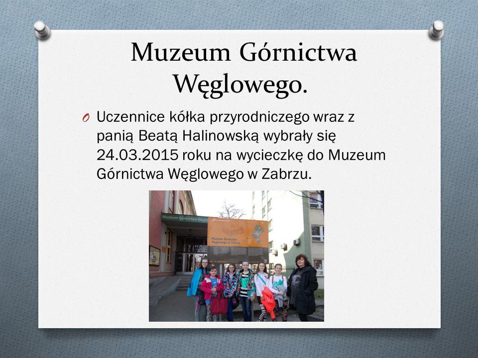 Muzeum Górnictwa Węglowego. O Uczennice kółka przyrodniczego wraz z panią Beatą Halinowską wybrały się 24.03.2015 roku na wycieczkę do Muzeum Górnictw