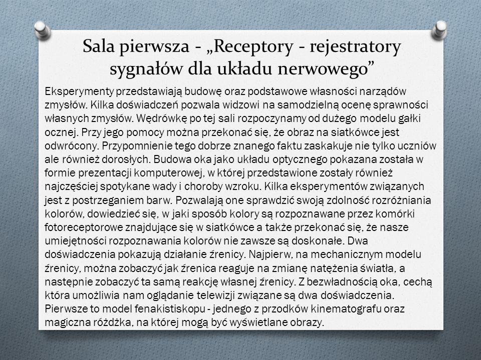 """Sala pierwsza - """"Receptory - rejestratory sygnałów dla układu nerwowego"""" Eksperymenty przedstawiają budowę oraz podstawowe własności narządów zmysłów."""