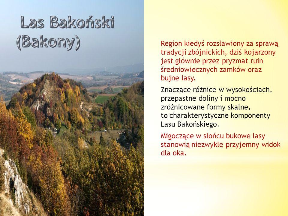 Trudno uwierzyć, że mała miejscowość turystyczna była kiedyś stolicą Królestwa Węgier. Znajdziemy tutaj Wieżę Salomona, a ściślej jej rekonstrukcję. N