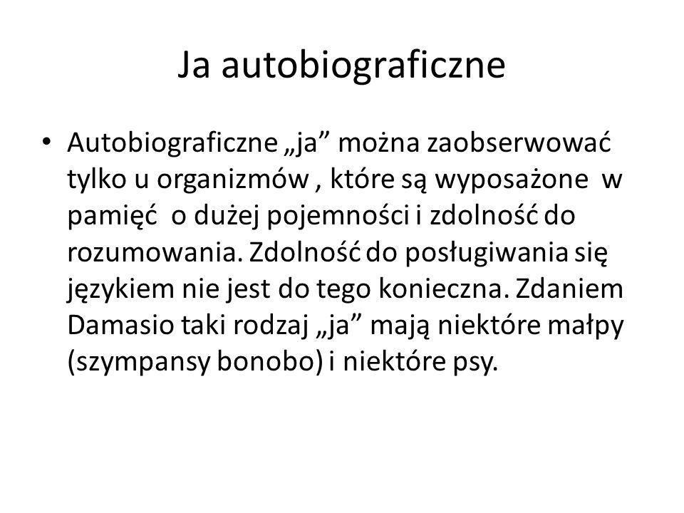"""Ja autobiograficzne Autobiograficzne """"ja"""" można zaobserwować tylko u organizmów, które są wyposażone w pamięć o dużej pojemności i zdolność do rozumow"""
