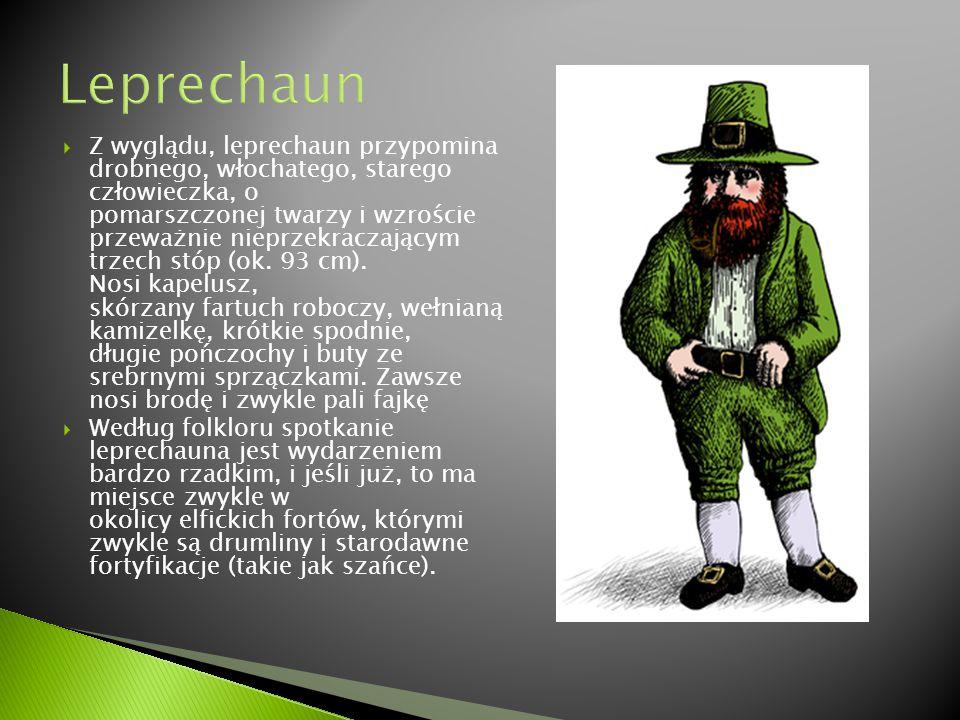  Istnieje kilka rodzajów piwa irlandzkiego, które dzieli się na stouty (ciężkie, czarne piwo z rewelacyjną białą pianką), z których najsłynniejszym jest Guinness.