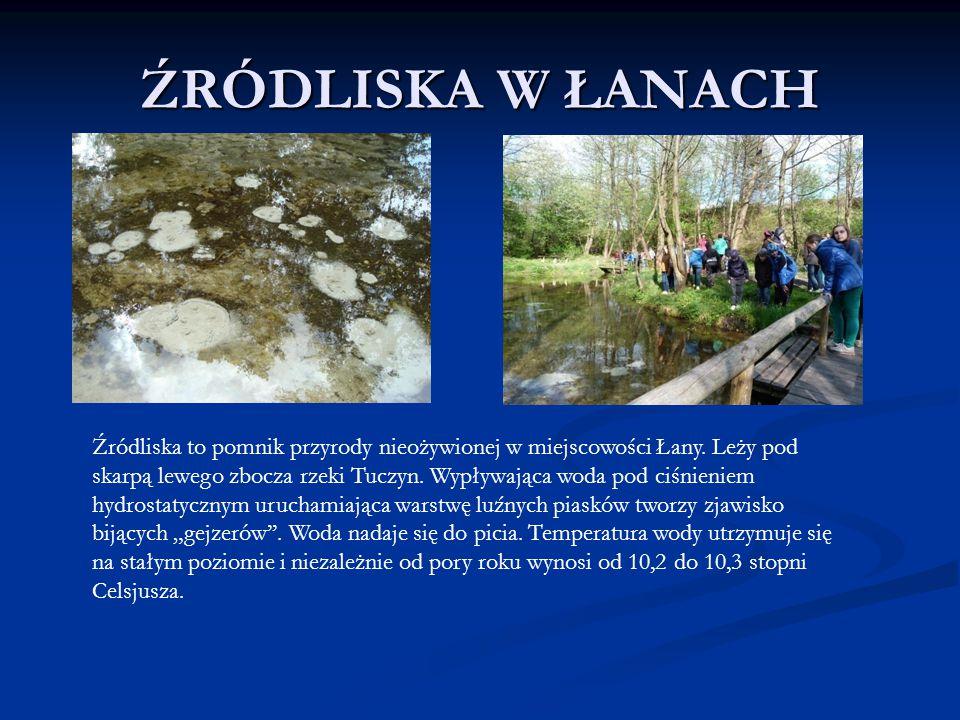 ŹRÓDLISKA W ŁANACH Źródliska to pomnik przyrody nieożywionej w miejscowości Łany. Leży pod skarpą lewego zbocza rzeki Tuczyn. Wypływająca woda pod ciś
