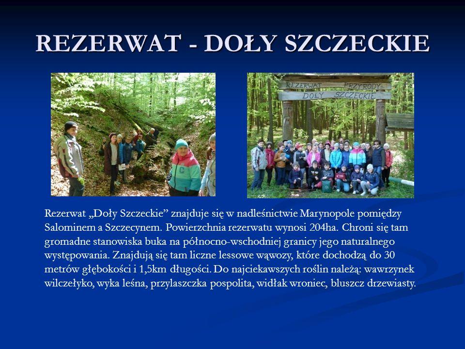 """REZERWAT - DOŁY SZCZECKIE Rezerwat,,Doły Szczeckie"""" znajduje się w nadleśnictwie Marynopole pomiędzy Salominem a Szczecynem. Powierzchnia rezerwatu wy"""