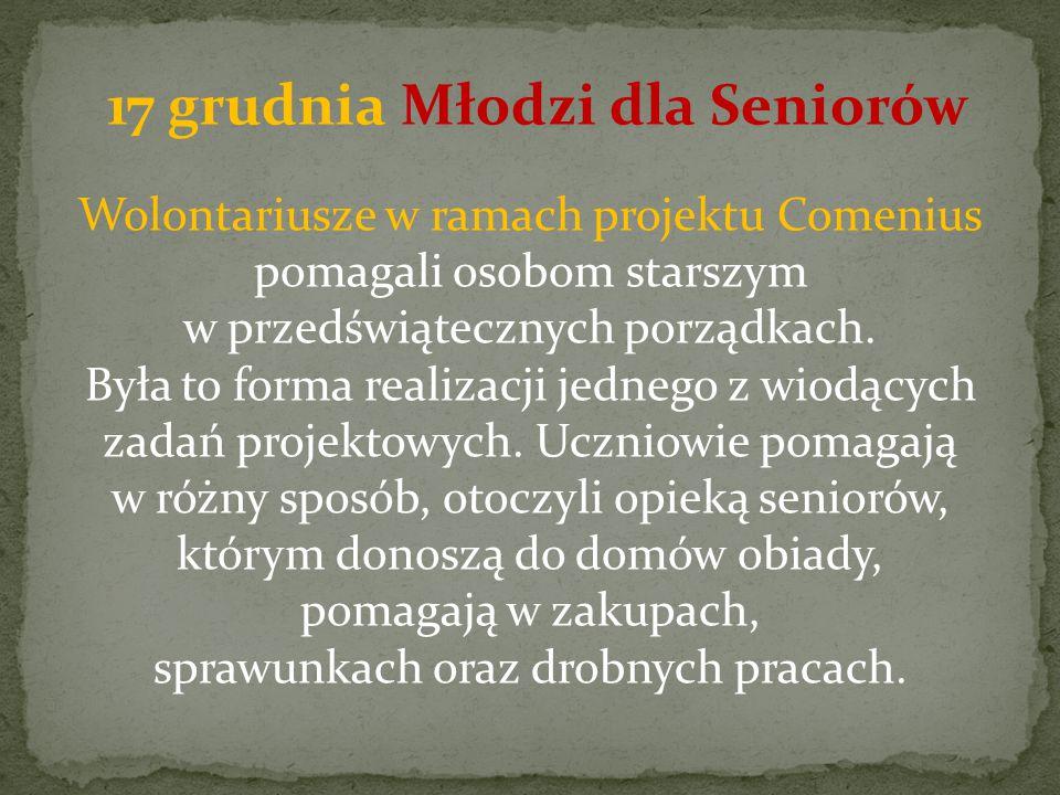 Wolontariusze w ramach projektu Comenius pomagali osobom starszym w przedświątecznych porządkach.