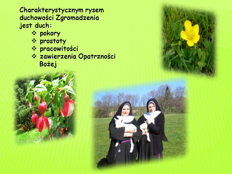 Siostry w swoim życiu zakonnym i działalności apostolskiej kierują się przede wszystkim duchem Ewangelii. W szczególny sposób praktykują miłość Boga i