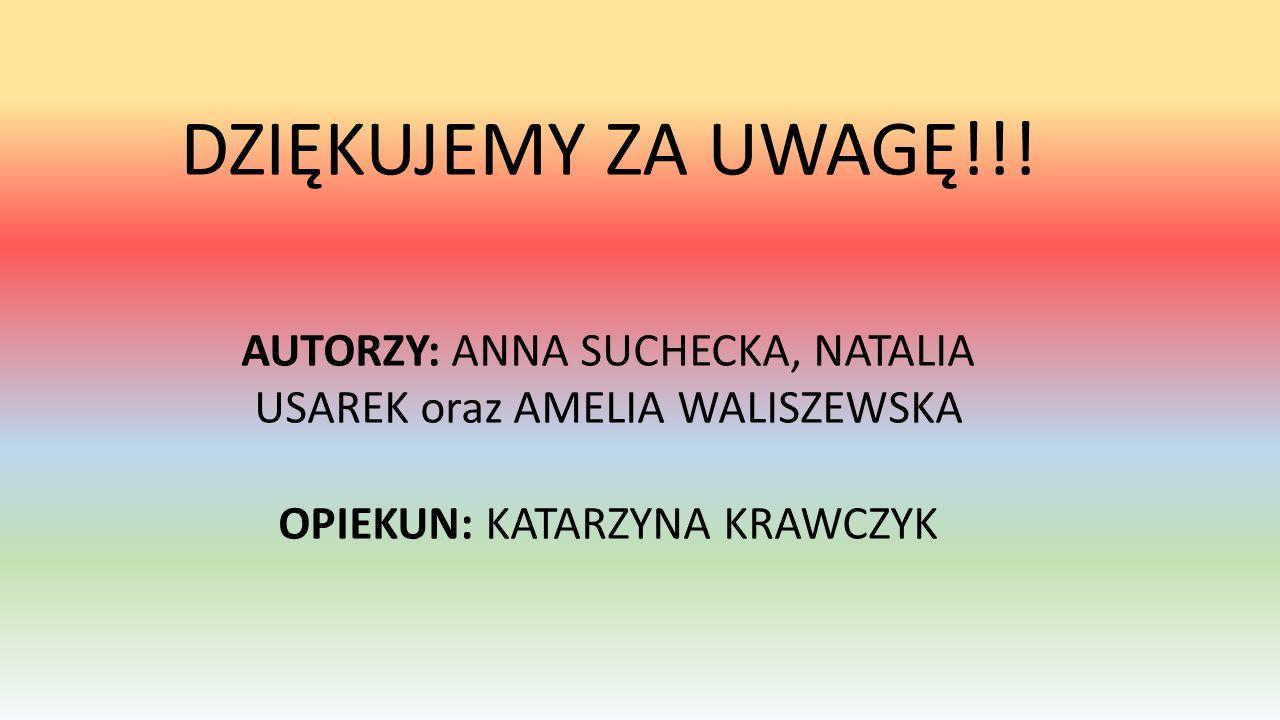 DZIĘKUJEMY ZA UWAGĘ!!! AUTORZY: ANNA SUCHECKA, NATALIA USAREK oraz AMELIA WALISZEWSKA OPIEKUN: KATARZYNA KRAWCZYK