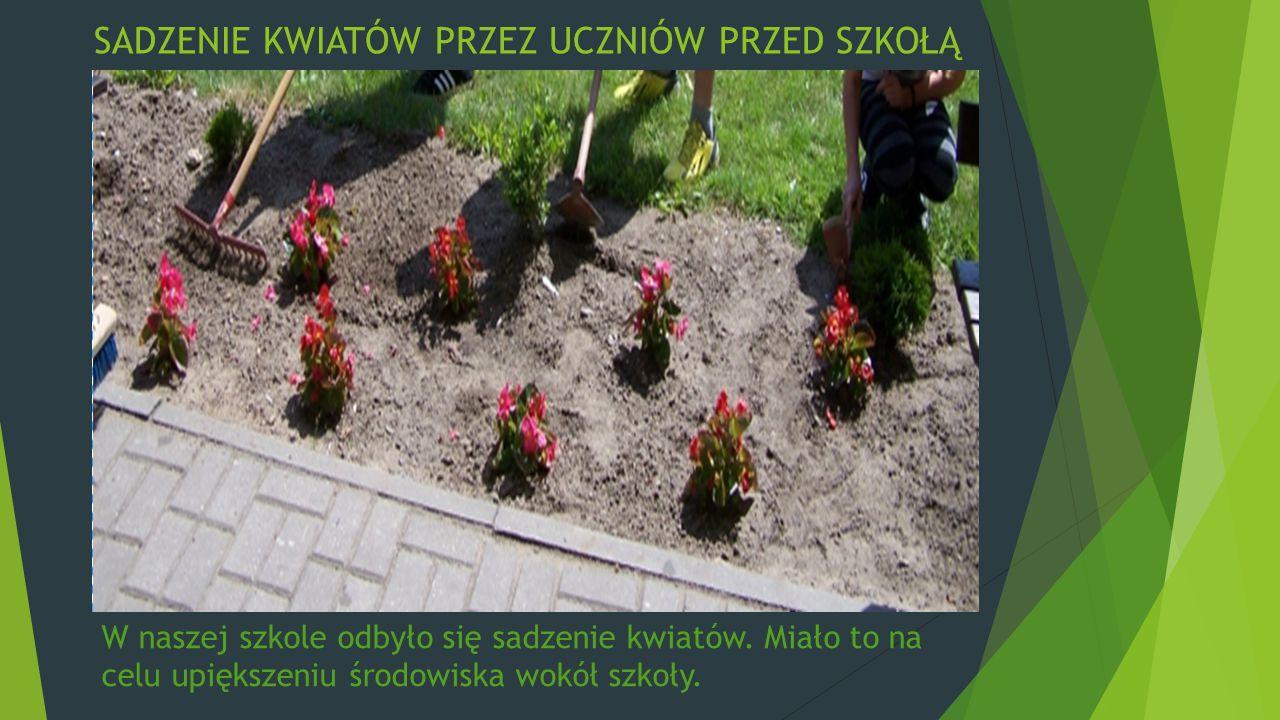 SADZENIE KWIATÓW PRZEZ UCZNIÓW PRZED SZKOŁĄ W naszej szkole odbyło się sadzenie kwiatów. Miało to na celu upiększeniu środowiska wokół szkoły.