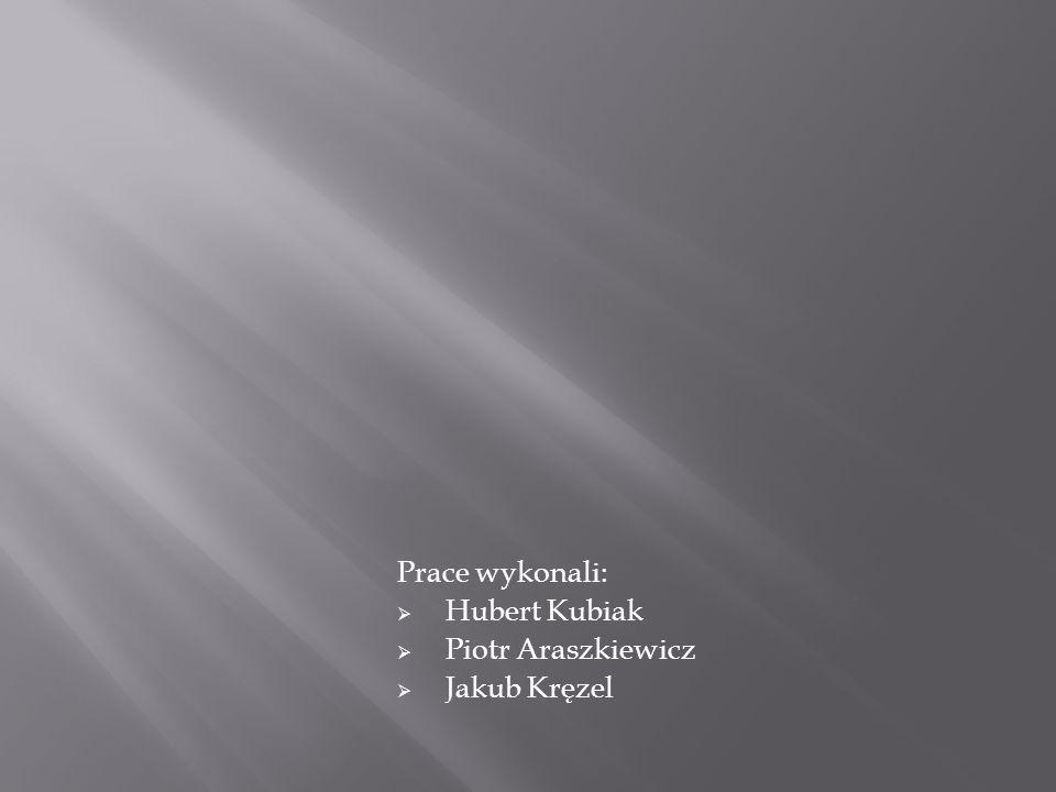 Prace wykonali:  Hubert Kubiak  Piotr Araszkiewicz  Jakub Kręzel