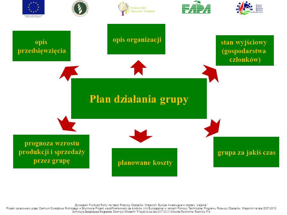 Plan działania grupy opis organizacji stan wyjściowy (gospodarstwa członków) planowane koszty grupa za jakiś czas opis przedsięwzięcia prognoza wzrost