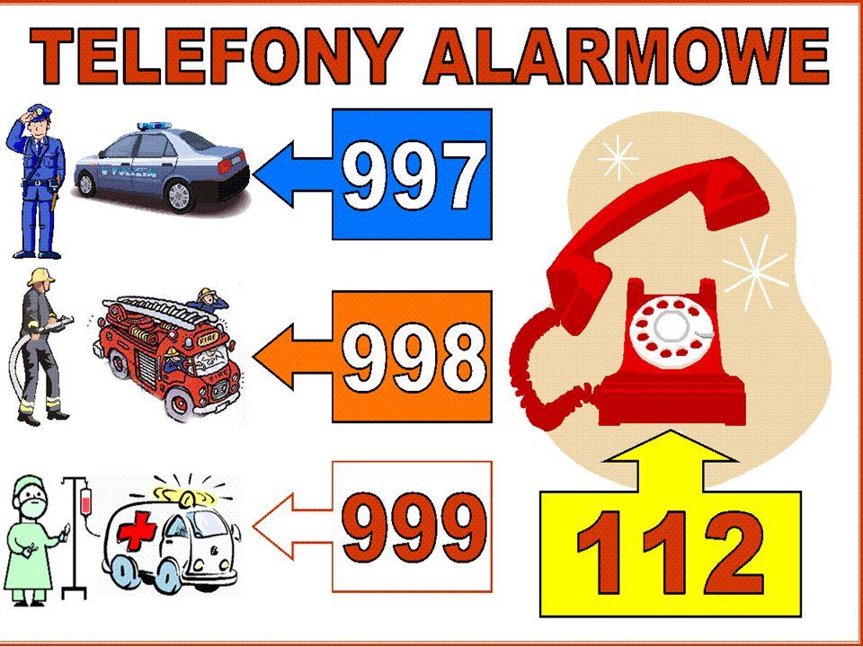 W każdej podróży przyda się telefon komórkowy z zapisanymi numerami alarmowymi.
